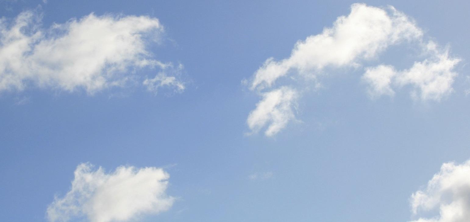 skypale2.jpg
